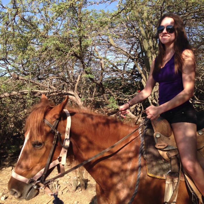Aruba Horseback Riding Tours Rancho Notorious