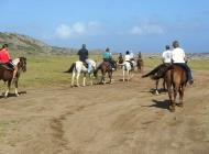 Horseback Riding Tour #4