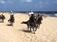 Horseback Riding Tour #6