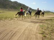 Horseback Riding Tour #7
